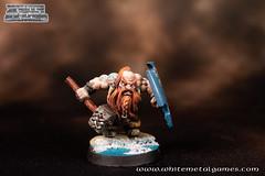 Dwarven Warrior-2
