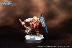 Dwarven Warrior-1