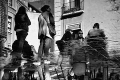 reflections (Egg2704) Tags: fotografíaurbana fotografíadecalle urbanphotography streetphotography reflejos agua reflejosenelagua blancoynegro blackandwhite blanconegro blackwhite monocromo monochrome bn byn eloygonzalo egg2704 zaragoza