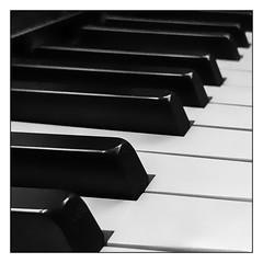 K   eys (Timothy Valentine) Tags: blackandwhite keyboard iphone3651 k silverefex 2020 0220 februaryalphabetfun home eastbridgewater massachusetts unitedstatesofamerica