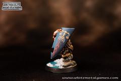 Dwarven Warrior-4