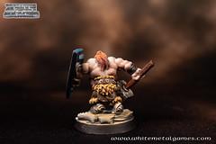 Dwarven Warrior-3