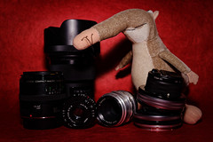 Günter - Guardian of the fifties (Pascal Volk) Tags: objektiv festbrennweite primelens objetivofijo objective objetivo günterdernasenbär kuscheltier stofftier plüschtier spielzeug stuffedtoy plushtoy peluche coatí coatimundi cinco five fünf crazytuesday canonpowershotg1xmarkiii 30mm canonspeedlite430exiiirt manfrotto mt294a3 804rc2 dxophotolab dxofilmpack kodakkodachrome64 stillleben stilllife bodegón