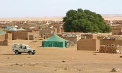 Viure al desert