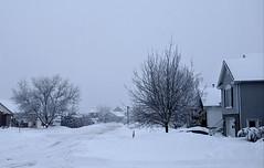 Winter in McMasterville, Qc (pegase1972) Tags: québec quebec qc canada monteregie montérégie winter hiver neige snow cold street rue