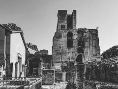 190706-213 Le Forum Romain (2019 Trip) (clamato39) Tags: rome forum voyage old trip blackandwhite bw italy monochrome ancient ruins europe noiretblanc landmark italie patrimoine ruines