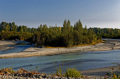 Enjoying a Morning Stroll While Walking Along the Shores of the Talkeetna River