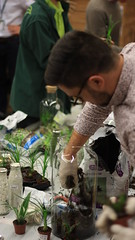 Atelier Terrariums (INNOV'events) Tags: atelier terrarium teambuilding écologie écoresponsable