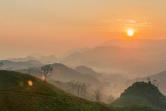 _Y2U5471-74.1214.Phiêng Luông.Mộc Châu.Sơn La (hoanglongphoto) Tags: asia asian vietnam northvietnam northernvietnam northwestvietnam landscape scenery vietnamlandscape vietnamscenery mocchaulandscape sunrise nature naturelandscape vietnamnature natureinvietnam sky sun mountain valley forest theforest hdr canon canoneos1dx flanksmountain tâybắc sơnla mộcchâu phiêngluông ql43 bìnhminh bầutrời mặttrời thiênnhiên phongcảnh phongcảnhthiênnhiên thiênnhiênvieetjanam bìnhminhmộcchâu núi thunglũng sườnnúi rừng mist fog earlymorningfog fogofmocchau sươngmù sươngsớm sươngmùmộcchâu