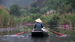 IMGP4547 Rowing (Claudio e Lucia Images around the world) Tags: rain rainyday pentax vietnam pentaxlens pentaxcamera trangan pentaxart pentax18135 pentaxkp flower water river power caves ang grottoes tran loto lotusflower ninhbinh waterlilium happy boat duck asia favorites planet rowing happyplanet asiafavorites