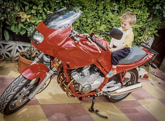 Yamaha 600 Diversion. . . (CWhatPhotos) Tags: cwhatphotos flickr camera photographs photograph pics pictures pic picture image images foto fotos photography artistic that have which contain digital motorcycle bike biker old 80s child toddler yamaha 600 divy diversion red garden