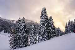 Snow in Dolomiti (msqphotographer) Tags: rosso dolomiti snow travel landscape prophotographer sony tour italy