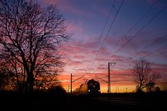 DB 182 001 + RE 3125  Magdeburg Hbf - Eisenhüttenstadt  - Golm (Rene_Potsdam) Tags: golm treinen trains re regionalexpress trenes treni tren deutschebahn deutschland duitsland germany br182 taurus brandenburg europa europe railroad