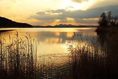 Dusk (Teruhide Tomori) Tags: landscape marsh water sunset shiga hikone japan japon nature light cloud sonemarsh 曽根沼 自然 風景 日没 滋賀県 彦根 水辺 日本 天使の梯子 angelsladder angelsstairway reflection ray