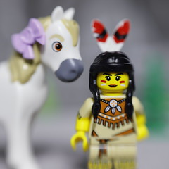 Indian Girl with her Pony (DayBreak.Images) Tags: tabletop toys lego minifigures indiangirl pony canondslr lensbabysol45 extensiontube