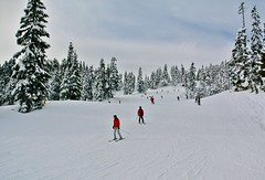 DSC_4264 Let's go!! (christinachui79) Tags: skiing skihill winter wintersport nature snow flickr snowscape outdoor outdoorsport nikon beautifulearth naturephotography snowmountain landscapephotography downhillskiing outdoorphotography flickrnature white