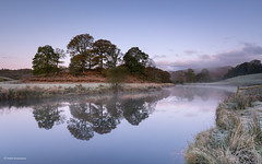 Copse of trees by the river (He Ro.) Tags: lakedistrict cold frost mist riverbrathay sunrise southlakeland river presunrise elterwater water trees copseoftrees grass reflections spiegelungen