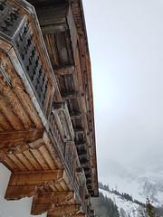 project365-20200212 | 043 | alpine geometry