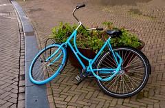 Don't leave your bike unattended! (Konstantinos CY) Tags: bike bicycle amsterdam dutch layingdown lightblue holland netherlands funny unique mirrorless fujifilm fuji xt100 mirrorlesscamera transport