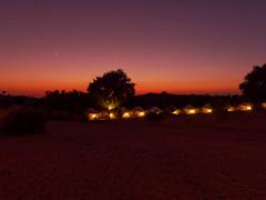 20191125-182938-00798A-Zeltlager in der Wüste (hugoholunder) Tags: wüste sand nacht sterne himmel lichter bäume sträucher sonnenuntergang indien manvar tharwüste natur landschaftsaufnahme