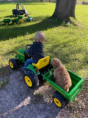 Ripp taking a tractor ride