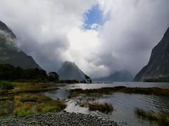 Milford Sound (terri-t) Tags: milford sound fjordland nationalpark newzealand aotearoa southisland landscape nature rain water mountain fjord cloudy