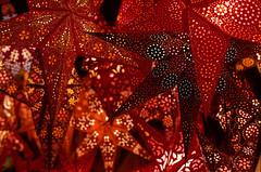 Those paper stars again ... (mkk707) Tags: film analog cinefilm 35mmfilm leicar7 leicasummiluxr50mm2ndmodel11776 silbersalz35500t wwwsilbersalz35com itsaleica vintagefilmcamera vintagelens kodak bokeh colours red