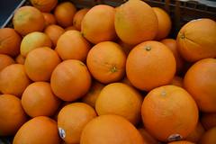 February 11: Oranges - Number 42