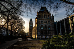Natural History Museum, London (Rachel EMF) Tags: naturalhistorymuseum