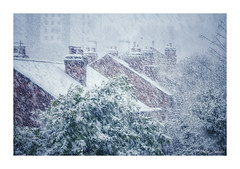 Photo of A brief snow storm