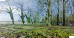 Pinhole Lainston House, Hampshire (neilalderney123) Tags: pinhole lensless nolens 3dprinted 35mm film winchester hampshire landscape