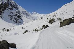 being on the track to mount Similaun (peter-goettlich) Tags: winter path way mountains rock austria tirol similaun pfad weg berge fels österreich vent