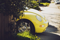slug bug yellow [Day 4060]