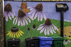 They Told Me To Think Spring (aerojad) Tags: eos canon 80d dslr 2020 chicago city urban outdoors snow snowing snowscape edgewater streetphotography streetscape citylife winter february art artinpublicplaces mural murals streetart