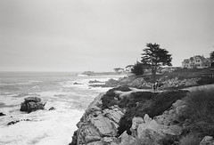 Sitting on the Edge of a Windy Shore (TheQ!) Tags: ricoh ricohgr1 ricohgr1s film filmisalive filmisnotdead ilford analog monterey california
