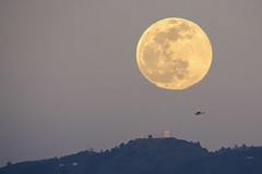 Synchronicity in action: Lick Observatory, celestial-object, aircraft (PeterThoeny) Tags: lickobservatory sanjose sanfranciscobay sanfranciscobayarea california mthamilton day dusk moon moonrise sky outdoor clear landscape skyline observatory building mountain airplane aircraft longlens sony sonya6000 a6000 tamron tamronsp150600mmf563 1xp raw photomatix hdr qualityhdr qualityhdrphotography cessna cessna172 fav100