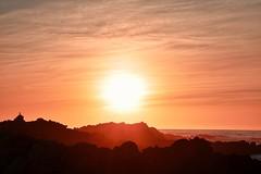 Winter Sunset in Monterey (davidjnear) Tags: monterey california beach sunset golden bird rocks coast coastline ocean oceanscape landscape nikon d3400 photography