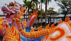 Here be dragons... (Ben Zabulis) Tags: asia kowloon hongkong tsimshatsui fareast dragon chinesenewyear chinese decoration hksar 九龍 尖沙咀 香港 龍 5photosaday
