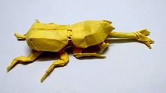 Samurai Helmet Beetle (tskorigami) Tags: samuraihelmetbeetle оригами искусство жук насекомое бумага лист square beetle insect art origami boxpleating samurai arthropod
