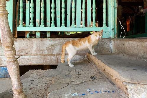 Near Pakse - Laos