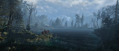 ''Lakelet'' (HodgeDogs) Tags: nvidia openworld lake cdprojektred redengine larahjohnson ciri witcher witcher3 people horse grass photography pc games gaming inexplore explore