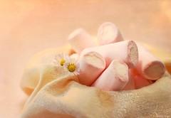 Marshmallow temptation (Ronnie Gaye) Tags: marshmallow pink cream napkin sweets flower daisy bokeh smileonsaturday sweetsformysweet