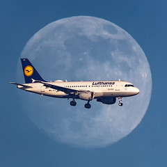 D-AILA Airbus Lufthansa A319-100 sorccing the moon (BOSCHH) Tags: daila airbus lufthansa a319100 sorccing moon mooncrosser crosser amsterdam airport schipohl 319 a319 general military civil aviation aviationdaily aviationgeek canon fighter fighterjet flight fly air force airline airplane helicopter jet photo photography photos pilot plane planespotting sky spotting cockpit