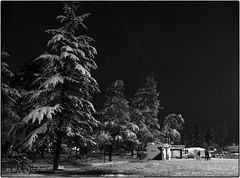 P080118-2.jpg (DrOpMaN®) Tags: night olympus olympusworkspace street lumix blackwhite outdoor snow m43turkiye m43 bw nikcollection ep5 winter korhankumral pen panasonic lumixgvario1442mmf3556oisii