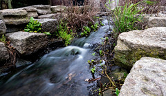 Water like silk (Konstantinos CY) Tags: water river longexposure stones mirrorless mirrorlesscamera fuji fujifilm xt100 nature flowing silk amsterdam park dutch waterflowing stone smooth grass green