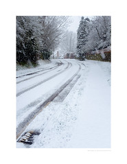 Let it snow (G. Postlethwaite esq.) Tags: fujix100t snow unlimitedphotos outdoor photoborder trees winter