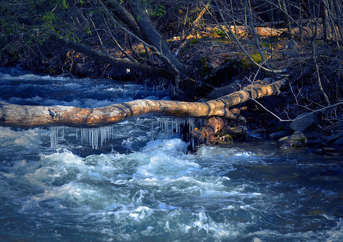 Icicles Hanging Over Raging River