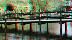 Blijdorp Zoo 3D (wim hoppenbrouwers) Tags: blijdorp zoo 3d anaglyph stereo redcyan brug pelicans