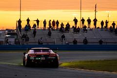 #86 Farnbacher-McMurry-Michimi-Gounon MeyerShankRacing AcuraNSX.GT3-3 (rickstratman26) Tags: imsa rolex 24 daytona speedway florida canon motorsport motorsports car cars racecar racecars racing acura nsx gtd gt3 sunrise golden hour