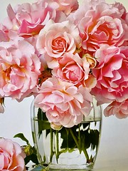 Happy Valentine's Day! (wjaachau) Tags: inspiration abstract pink homedecoration decoration sunshine summer garden landscape nature bouquet floral flowers🌸